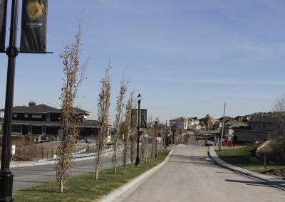 Road view of the main boulevard in Calgary's new community, Patterson Heights